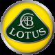 Мониторы в зеркале заднего вида для Lotus